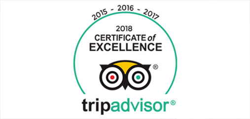 tripadvisor review of gojump